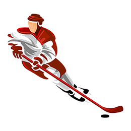 logo api hockey